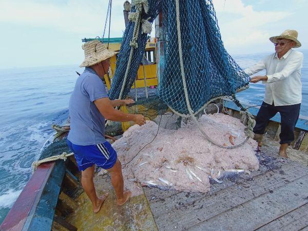 渔民难得遇上丰收,捞起满满的峇拉煎虾;左起林国安与王雅霖。