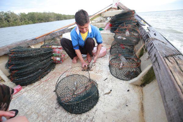 陈贤庆把螃蟹从笼里拿出并熟练的绑好。